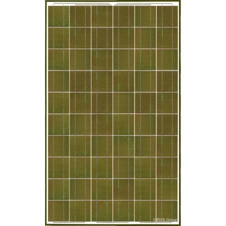 Panneau solaire BISOL Spectrum Olive Green 255W